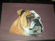 Coloriage Bouledogue Anglais.Bulldog Anglais Dessin Galerie Creation